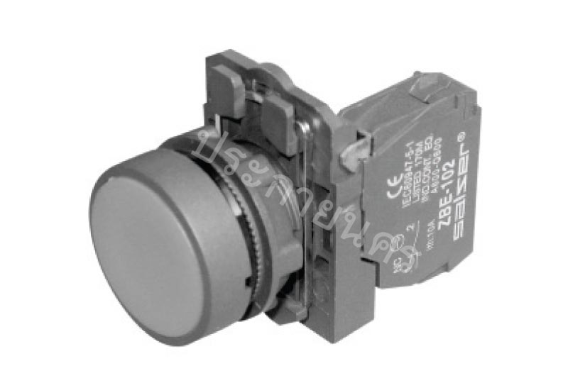 SB5-AA31 (ZB5 AZ101 + ZB5 AA3)